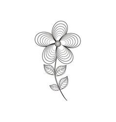 jasmine flower decoration line vector image