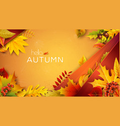 autumn for text with fallen leaves vector image