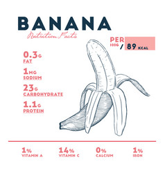 banana - nutritional information vector image