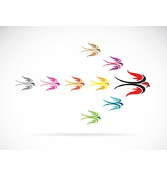 Group colorful swallow birds vector