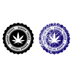 Marijuana danger trends stamp with scratched vector