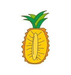 pineapple fruit template flat vector image