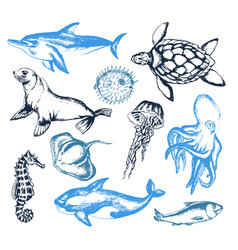 Sea creatures - of vintage vector