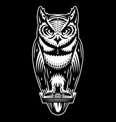 stylish owl that sits monochrome vector image