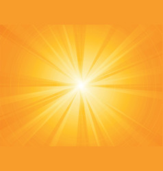 yellow rays radial sun background vector image