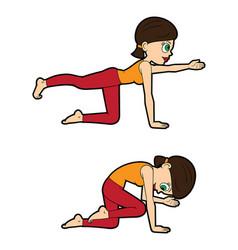 yoga asana set cat-cow knee variations vector image