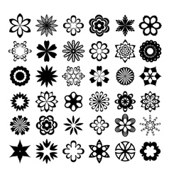 set of graphic flowers vector image