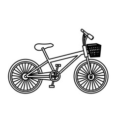 monochrome contour of bike with basket in white vector image