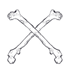 Crossed bones - hand drawn vector