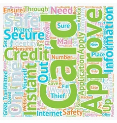 Instant Approval Credit Cards Online Are They Safe vector image