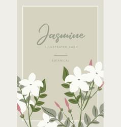 Jasmine flower banners design for tea vector