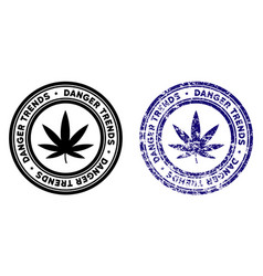 Marijuana danger trends stamp with distress vector