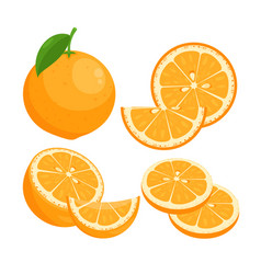 oranges flat set juicy ripe vector image
