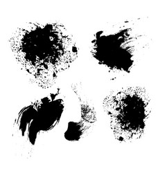 set black brushes isolated on white vector image