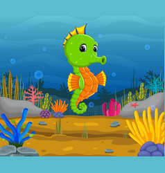 cartoon tropical sea horse vector image