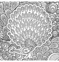coloring page for adults with peacock vector image