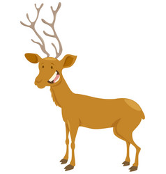 Deer cartoon animal character vector