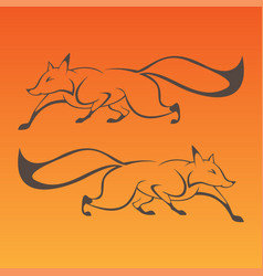 fox art sign in curve lines vector image