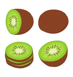 tropical fruit exotic kiwi setflat style vector image