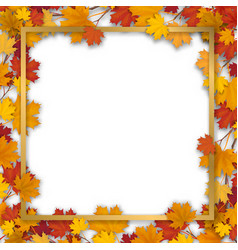 golden frame in autumn maple foliage vector image