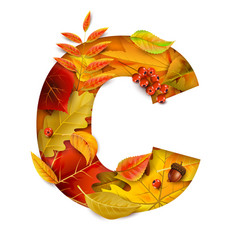 Autumn stylized alphabet with foliage letter c vector