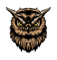 Colorful concentrated wise owl template vector
