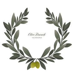olive branch wreath isolated vector image