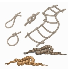 Set of rope elements ladder lasso knots loop vector image