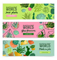 succulents banners set vector image