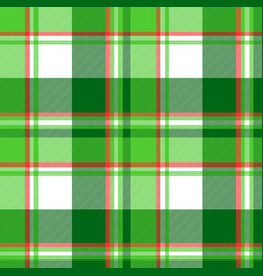 summer color green check plaid seamless pattern vector image