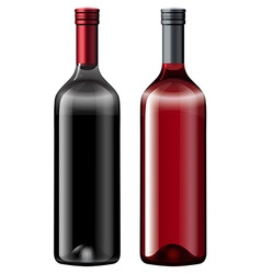 Two bottles fo wine vector image