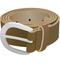women brown belt vector image