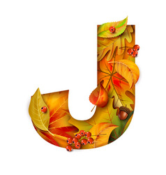 Autumn stylized alphabet with foliage letter j vector