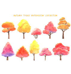Autumn trees watercolor hand painting collection vector