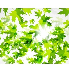 Green leaves pattern spring design template vector image