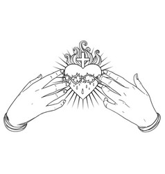 open praying hands around sacred heart jesus vector image