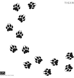 Tiger paw prints vector