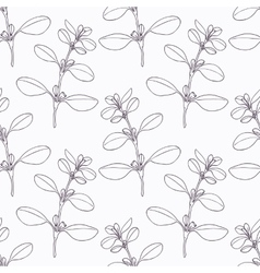 Hand drawn marjoram branch outline seamless vector image vector image