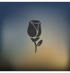 rose icon on blurred background vector image