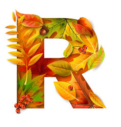 autumn stylized alphabet with foliage letter r vector image