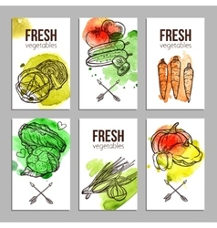 Cards With Vegetables vector