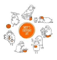 everyday life a little sheep vector image