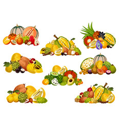 Fruit and berry icons exotic fruity food vector