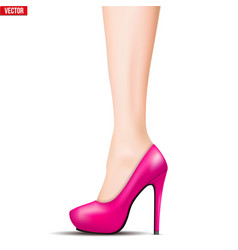 leg with high heel shoe vector image