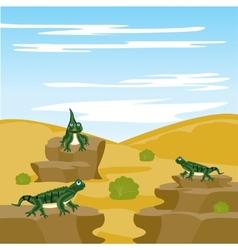 Lizard iguana in desert vector