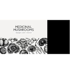 Medicinal mushroom background hand-sketched vector