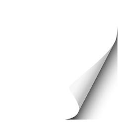 Page curl with shadow on blank white sheet vector