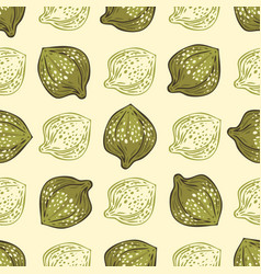 Seamless pattern salted and pickled caper bud vector