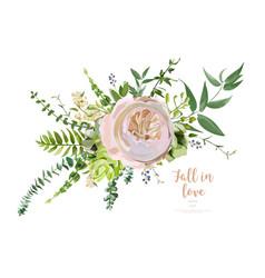 bouquet element of pink garden rose green vector image vector image