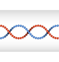 dna red blue vector image vector image